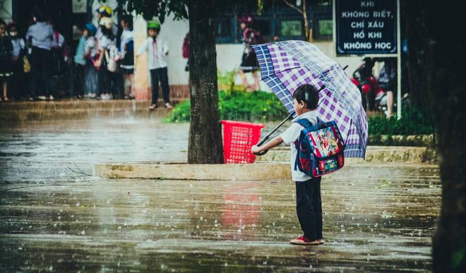 cần gạt mưa ô tô